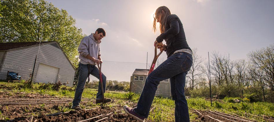 A male and female Student digging in a garden